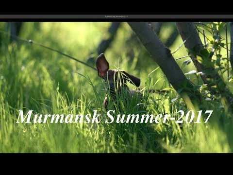 SUMMER MURMANSK-2017