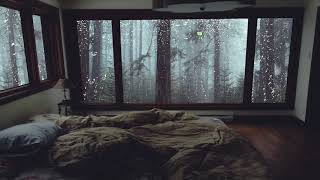 Relaxing Rain Sounds for Sleeping - Heavy Rain Sounds in Misty Forest without Thunder - 10 Hours