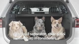 Accesorii pentru transportul câinilor
