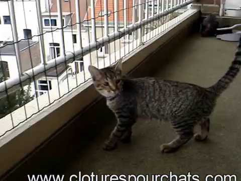 filet pour chat sur le balcon youtube. Black Bedroom Furniture Sets. Home Design Ideas