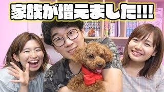 【報告】新しい家族が増えました!【犬】