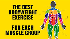 The Best Bodyweight Exercise For Each Muscle Group - Calisthenic Exercises