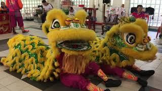 Jin Ann Lion Dance Cai Qing Performance at Xi Nan Tan 8 July 2019