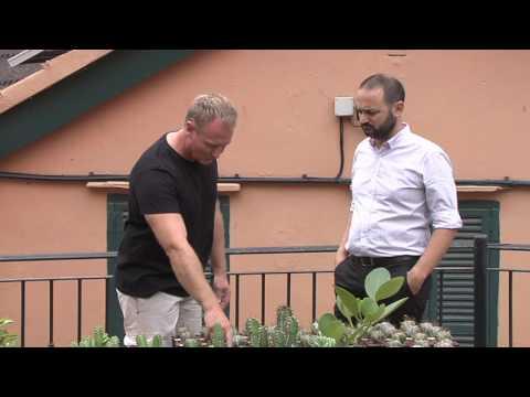 Gibraltar Botanical Gardens works to help BVI succulent plants 19.07.2016