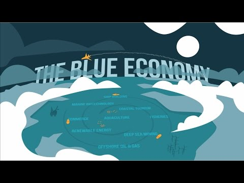 Satellite Applications and the Blue Economy