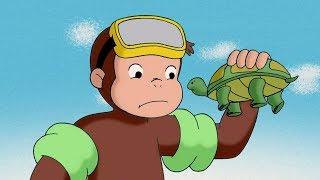 好奇的喬治 🐵Curious George Chinese 🐵好奇猴喬治去潛水 🐵第1季 🐵动画片 🐵卡通 🐵动画 🐵Cartoon 🐵Animation
