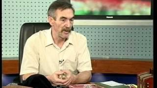 Знахарь Сергей Крутиков в эфире ТК