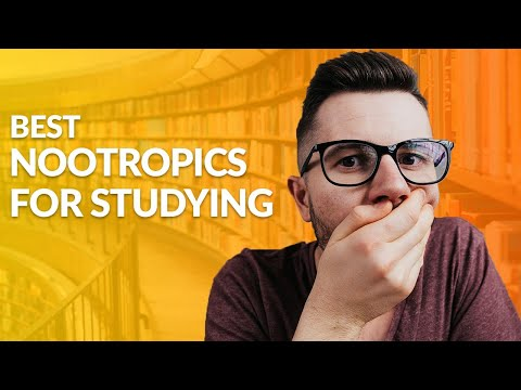 the-best-nootropics-for-studying-&-learning-of-2019!