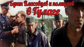 Бунт власовцев и полицаев в ГУЛАГЕ. Чем это закончилось?  Сталинские репрессии - военные истории