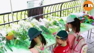 Japan's oldest elephant dies in Tokyo zoo