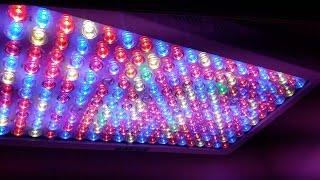 higrow-optical-lens-series-1000-watt-full-spectrum-led-grow-light-review