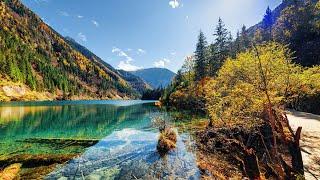 Красивая страна Канада.  Нетронутая Природа  - леса, озера, водопады, животные