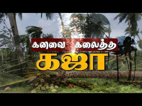 கனவை கலைத்த கஜா | Gaja Cyclone | Puthiya Thalaimurai Exclusive Coverage Of Gaja Cyclone Affect