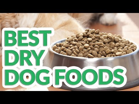 Best Dry Dog Food 2019 - 10 TOP Dry Dog Foods