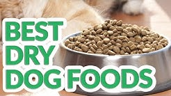 Best Dry Dog Food 2019 - 10 TOP Dry Dog Foods