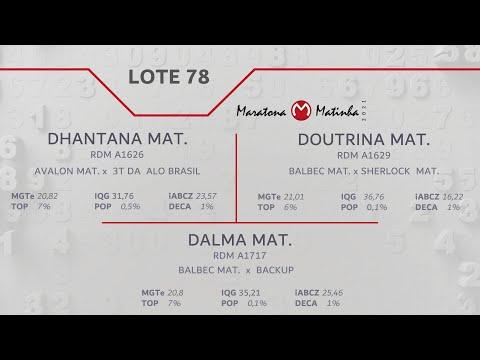 LOTE 78 Maratona Matinha