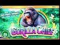 Gorilla Chief 95% payback slot machine, bonus