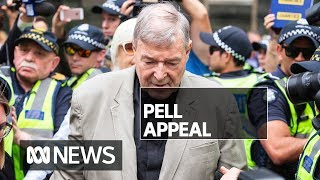 George Pell's last-chance appeal allowed by High Court   ABC News