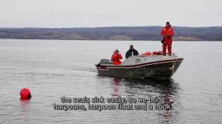 11 Seasonal Hunting - Hunting Seal in the Summer