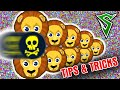 Cannonsplit, Vanishsplit, Double Tricksplit - Agar.io Tricks | Agario Gameplay