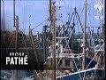 Scottish Fishing Boats (1971)