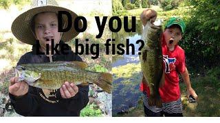 Ви любите рибалку?