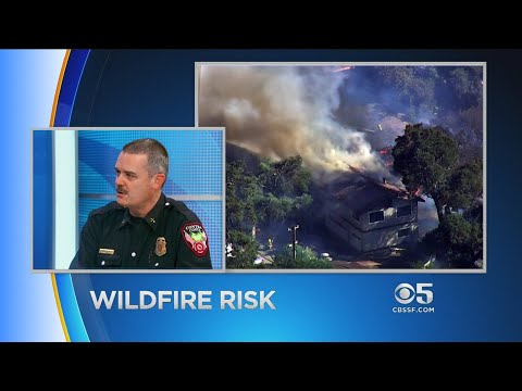 At Issue: Bay Area Wildfire Risk