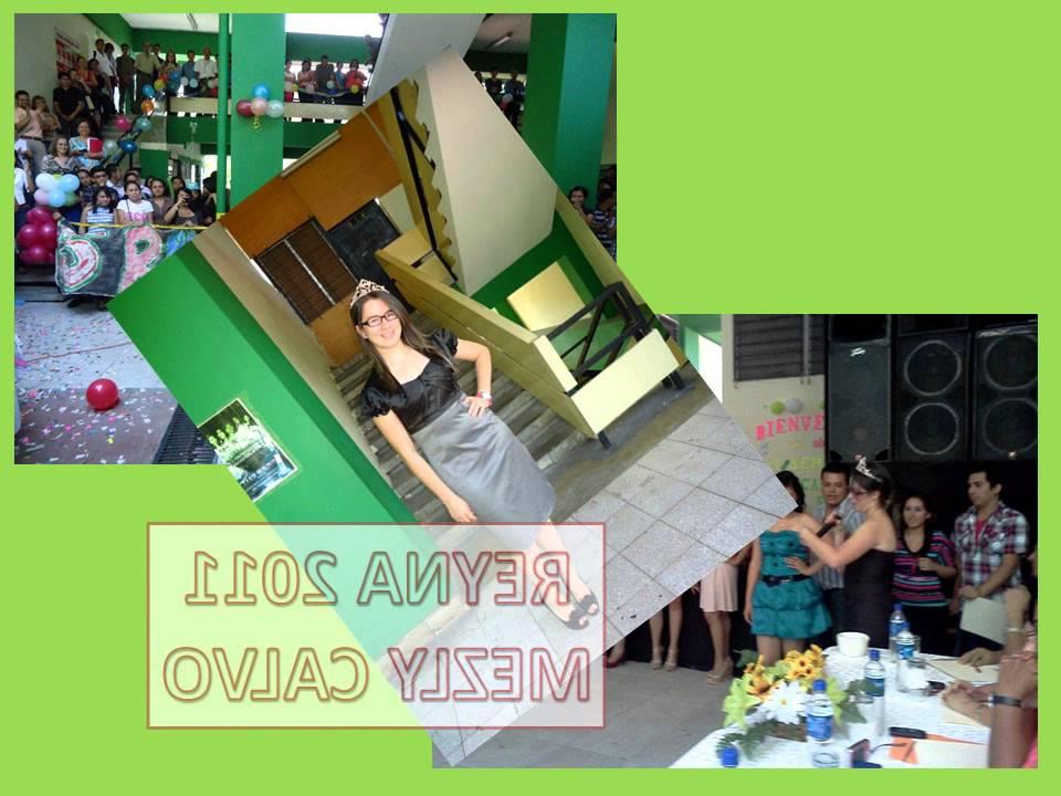 Invitacion Al Primer Reencuentro De Ex Alumnos De Quimica Y