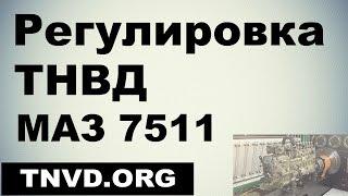 Регулировка ТНВД МАЗ 7511(, 2015-12-26T17:55:20.000Z)