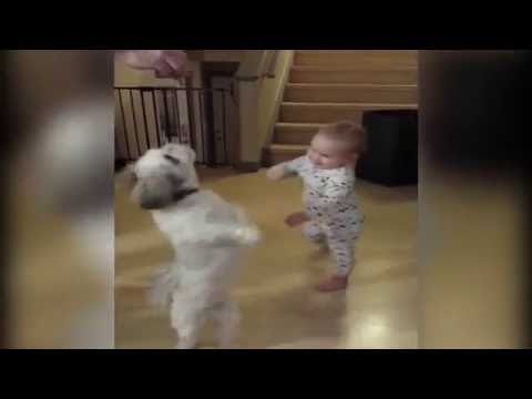 Baby Copies Dog for a Treat