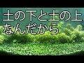 ずっと緑の出てくる【コケ掃除】 の動画、YouTube動画。