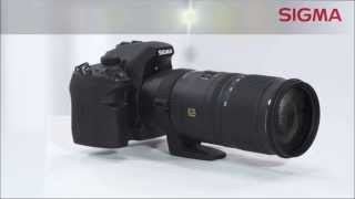 Sigma APO 70-200mm F2.8 EX DG OS HSM Review - Must Have For a High-End Telephoto Geeks