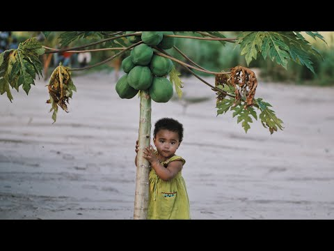 Creating our little paradise in Congo | vlog #781