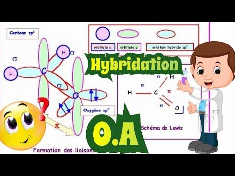 L'hybridation des orbitales atomiques de type sp, sp2 et sp3 [[ La liaison chimique]]