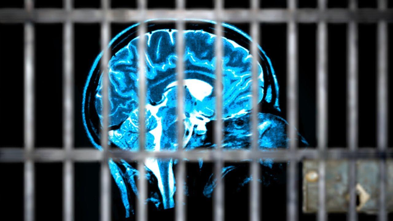 Resultado de imagen de crime brain