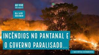 Pantanal em chamas e governo paralisado -  VERDE MAR #66