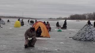 г.Волжский , зимняя рыбалка на р. Ахтуба о.Зеленый 10.03 2013г.