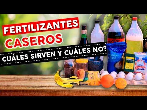Cuáles son los Fertilizantes Caseros que DE VERDAD funcionan?