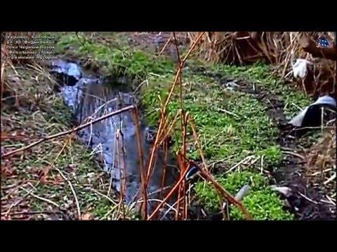 Видео Экологическая ситуация в новосибирске