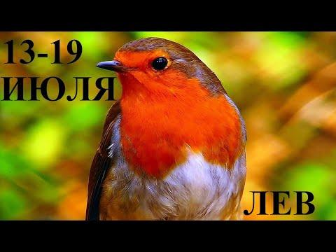 ЛЕВ 13-19 ИЮЛЯ ГОРОСКОП ОТ ЛИС ФИЗАЛИС