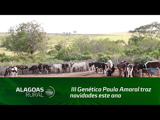 III Genética Paulo Amaral traz novidades este ano