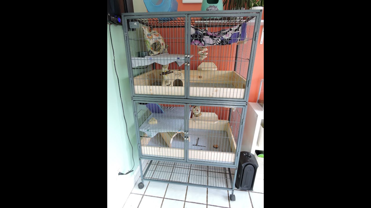 Chinchilla Cage Tour (Double Ferret Nation)