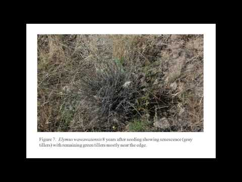 Management of Cheatgrass Fuel Loading in the Shrub-Steppe