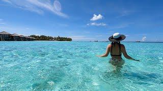 Vilamendhoo  Sland Resort And Spa - May 2021 Snorkeling In The Maldives