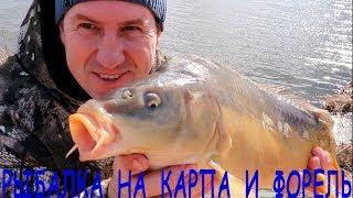 Рыбалка по холодной воде  на карпа и форель на фидер / Ранняя весна 2020