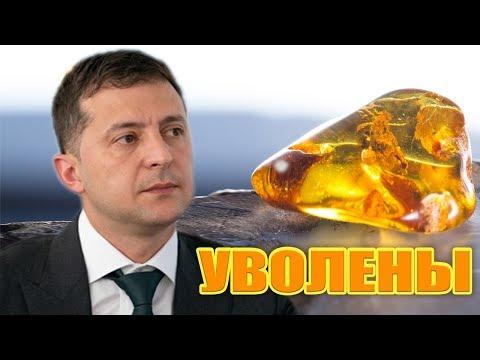 Незаконная добыча янтаря в Житомире - Зеленский на совещании разорвал всех! (Полная версия)