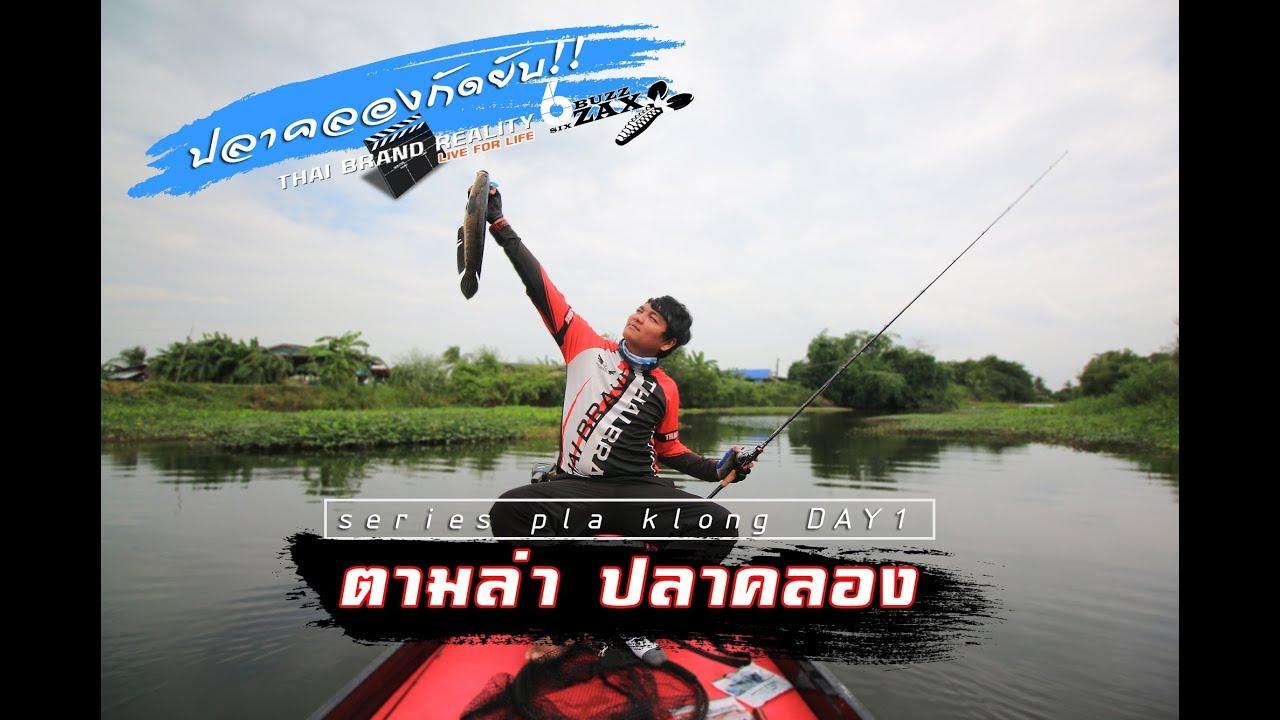 ล่าปลาคลองThe series Day 1#ผจญภัย ตกปลา ช่อน ชะโด คลอง - fishing snakehead fish in thailand river