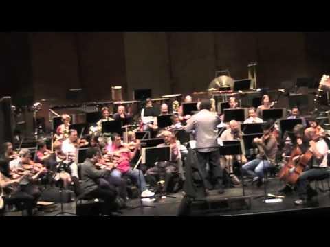 Orhan Salliel Conductor L.v. Beethoven Symphony no