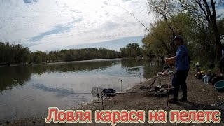 Рыбалка на кормачки и флет фидер весной Ловля карася на пелетс 3kBaits Лучшая наживка по карасю