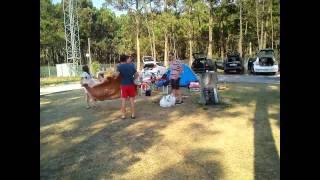 O ADEUS... :) férias_ Vila Chã - Campismo 2013